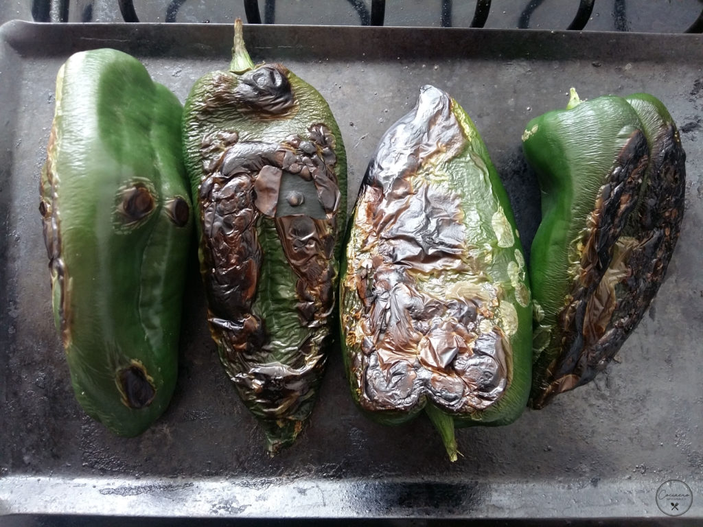 chiles para salsa